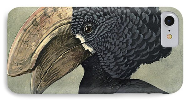 Crested Hornbill IPhone Case by Louis Agassiz Fuertes