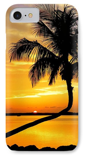 Crooked Palm Phone Case by Karen Wiles