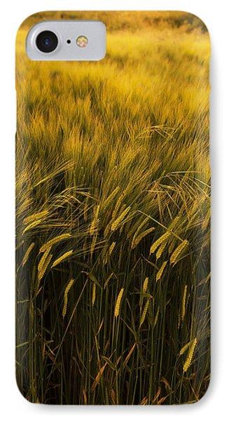 Crops Phone Case by Svetlana Sewell