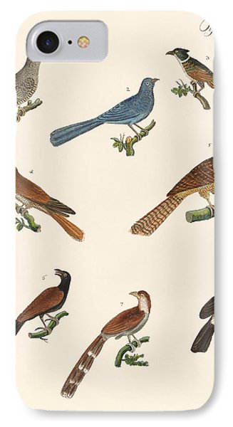 Cuckoos From Various Countries IPhone Case by Splendid Art Prints