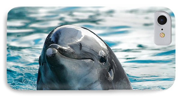 Curious Dolphin Phone Case by Mariola Bitner
