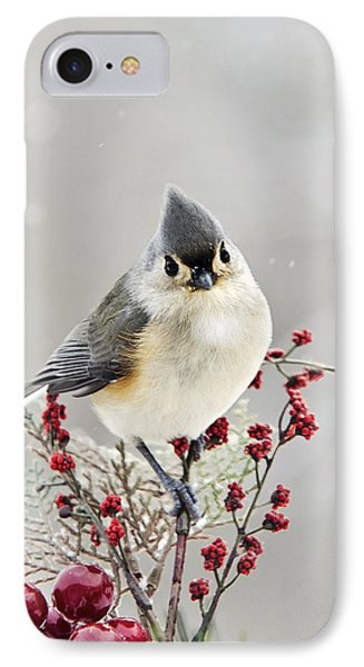 Cute Winter Bird - Tufted Titmouse IPhone 7 Case by Christina Rollo