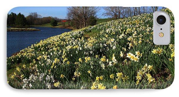 Daffodil Hill Phone Case by Karol Livote