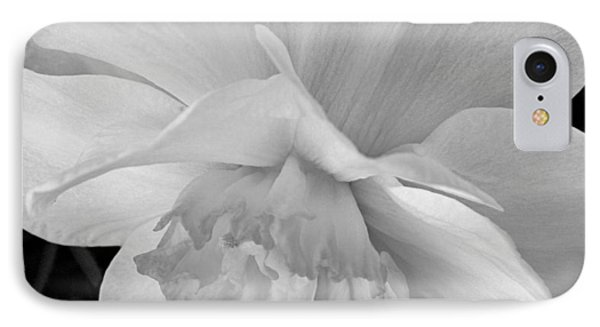 Daffodil Study Phone Case by Chris Berry