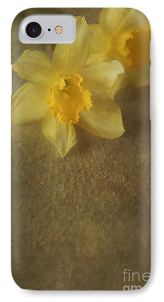 Daffodils  IPhone Case by Jaroslaw Blaminsky