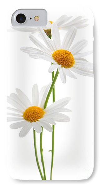 Daisies On White Background IPhone Case by Elena Elisseeva