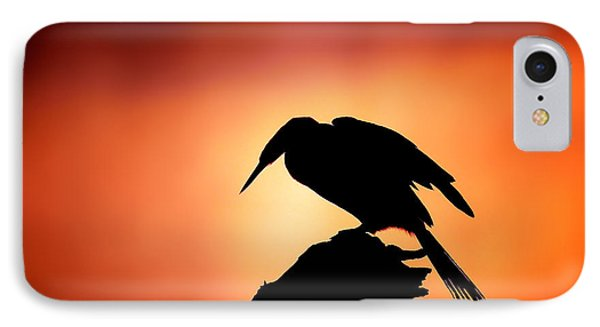 Darter Silhouette With Misty Sunrise IPhone Case by Johan Swanepoel