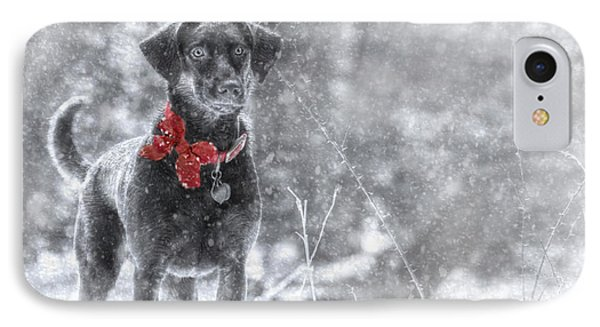 Dashing Through The Snow IPhone Case by Lori Deiter
