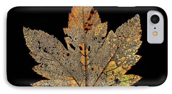 Decayed Norway Maple Leaf IPhone Case by Gilles Mermet