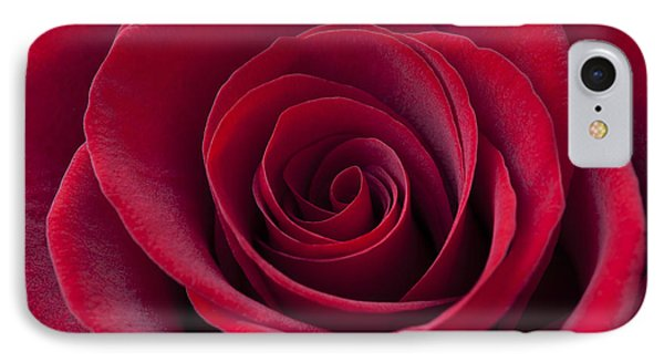Deep Red Rose IPhone Case by Simon Kayne