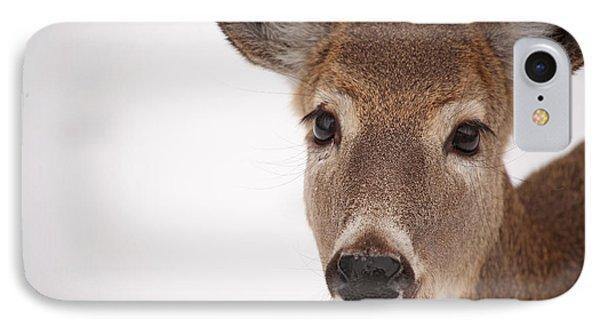 Deer Talk Phone Case by Karol Livote