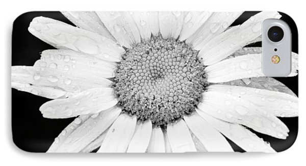 Dew Drop Daisy IPhone Case by Adam Romanowicz