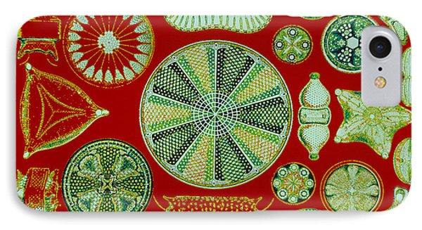 Diatoms-ernst Haeckel Phone Case by Scott Camazine