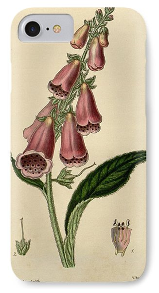 Digitalis  IPhone Case by Philip Ralley
