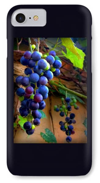 Divine Perfection IPhone Case by Karen Wiles