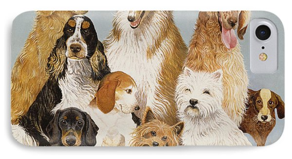 Dogs Dinner  IPhone Case by Pat Scott