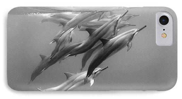 Dolphin Pod IPhone 7 Case by Sean Davey