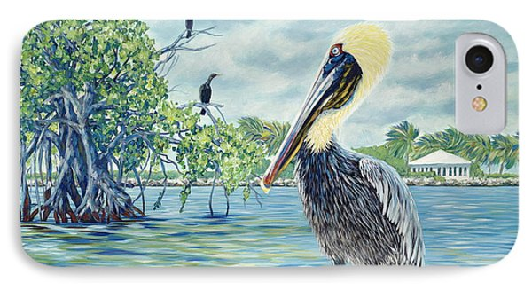 Down In The Keys Phone Case by Danielle  Perry