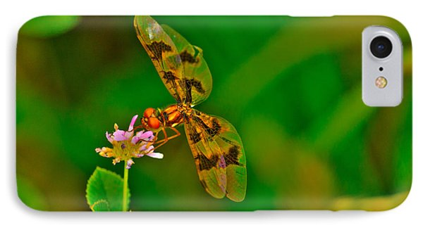 Dragonfly And Flower Phone Case by Lorri Crossno