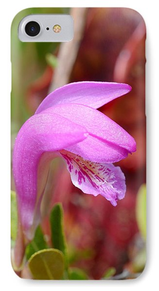 Dragon's Mouth Orchid #3 Phone Case by Sandra Updyke