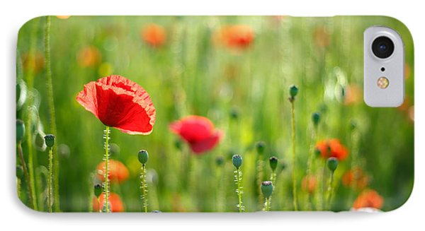 Dreamscape - Field Of Poppies IPhone Case by Roeselien Raimond