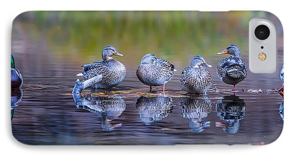 Ducks In A Row IPhone 7 Case by Larry Marshall
