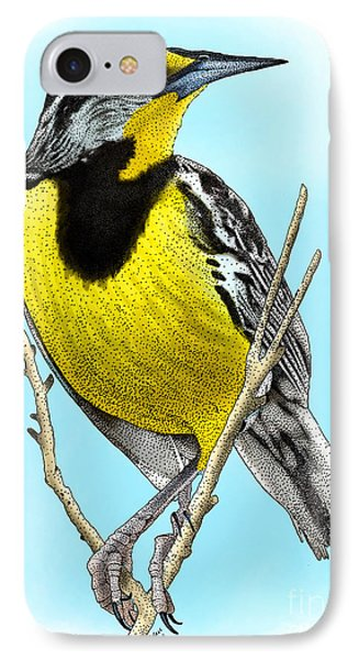 Eastern Meadowlark IPhone Case by Roger Hall