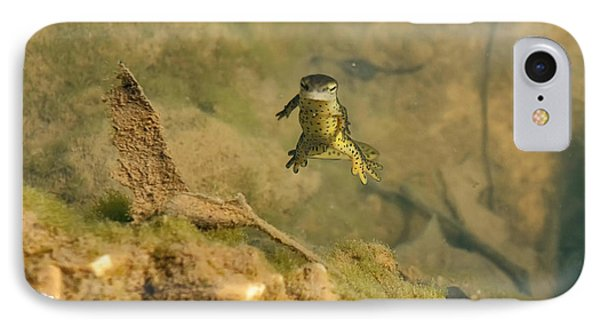 Eastern Newt In A Shallow Pool Of Water IPhone 7 Case by Chris Flees