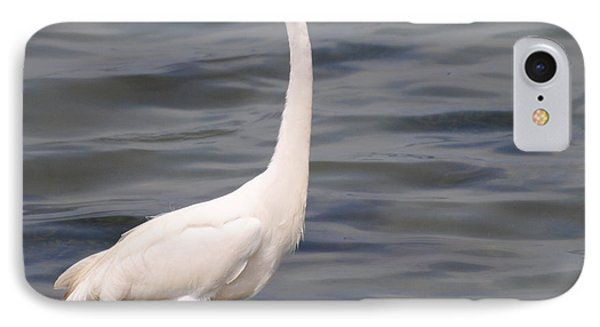 Egret On Alert IPhone Case by Dan Williams