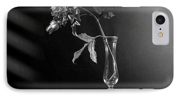 Elegant Respect  IPhone Case by Mark Ashkenazi