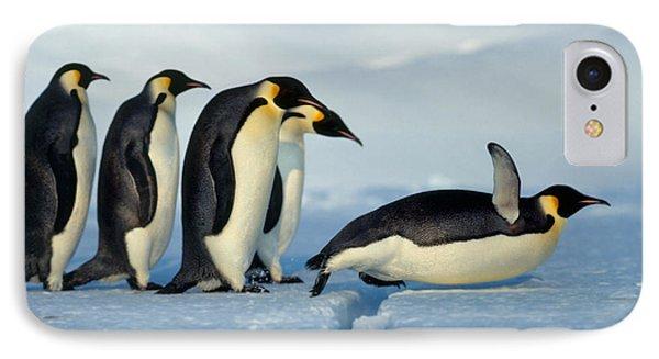 Emperor Penguin Aptenodytes Forsteri IPhone 7 Case by Hans Reinhard
