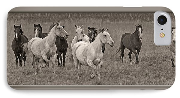 Escapees From A Lineup D8056 IPhone Case by Wes and Dotty Weber