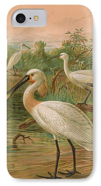 Eurasian Spoonbill IPhone Case by J G Keulemans