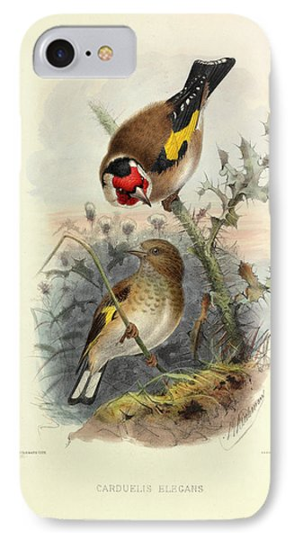 European Goldfinch IPhone Case by Natural History Museum, London