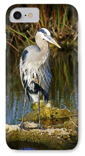 Everglades Blue Phone Case by Marty Koch