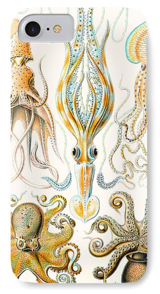 Examples Of Various Cephalopods IPhone Case by Ernst Haeckel