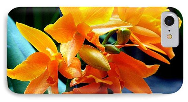 Exotic Orange Phone Case by Karen Wiles
