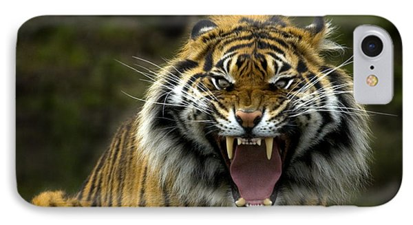 Eyes Of The Tiger Phone Case by Mike  Dawson