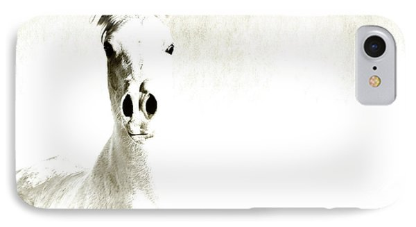 Fade To White Phone Case by Karen Slagle