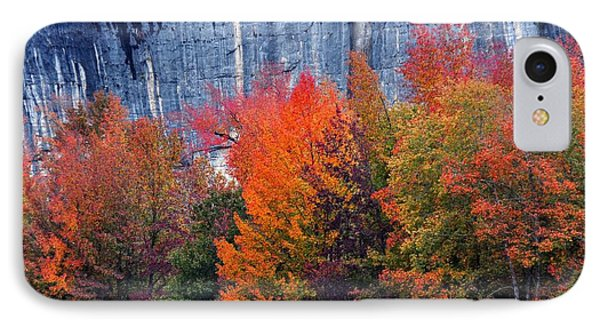 Fall At Steele Creek Phone Case by Marty Koch