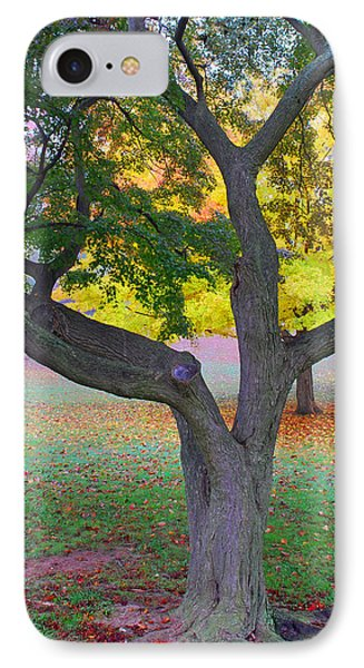 Fall Color Phone Case by Lisa Phillips