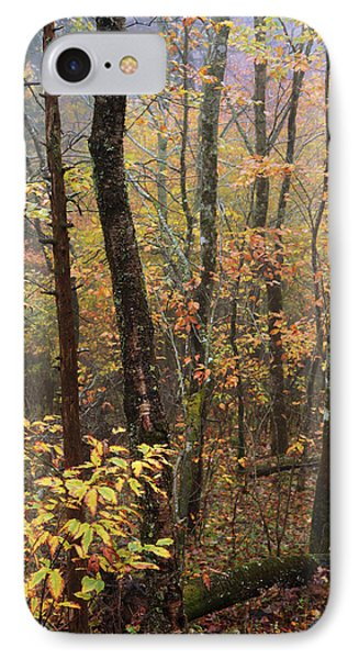 Fall Mist IPhone Case by Chad Dutson