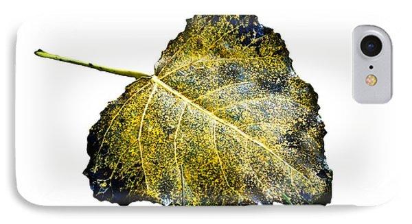 Fallen Leaf 1t IPhone Case by Greg Jackson