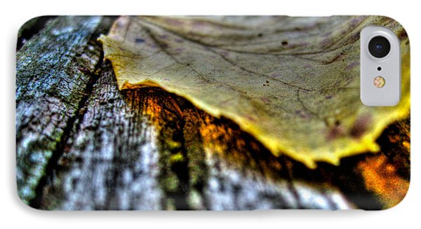 Fallen Leaf IPhone Case by Nina Ficur Feenan