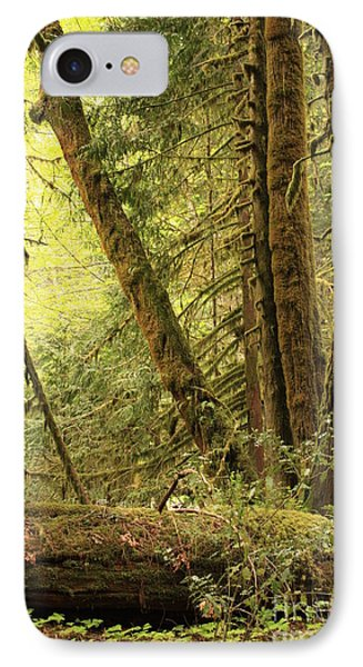 Falling Trees In The Rainforest Phone Case by Carol Groenen