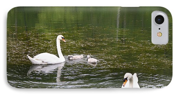Family Of Swans IPhone Case by Teresa Mucha