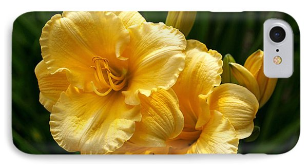 Fancy Yellow Daylilies IPhone Case by Rona Black