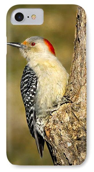 Female Red-bellied Woodpecker Phone Case by Bill Wakeley