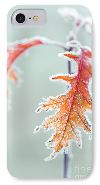 First Frost IPhone Case by Lucid Mood