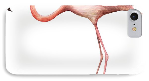 Flamingo IPhone Case by Anonymous